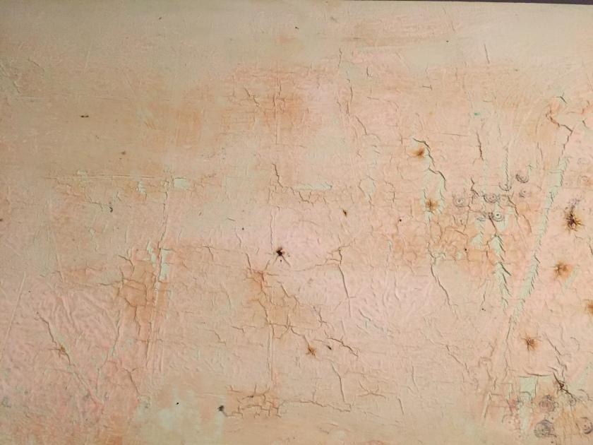 dresser paint strip stripper citristrip